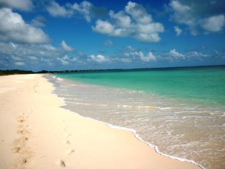 barbuda pink beaches - photo #25