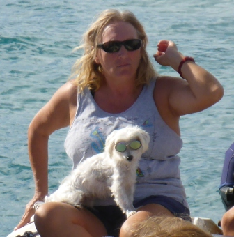 Doggy sunglasses