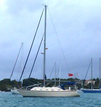 Morphie back at anchor