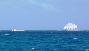 Royal Clipper sailing by