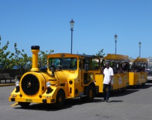 Noddy train tour for cruise ship passengers