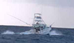 Fishing trip 4
