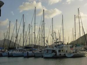 Rodney Bay Marina 1