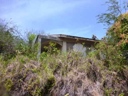 Jungle reclaiming the abandoned homes 2