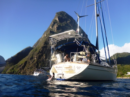 Morphie enjoying the Pitons anchorage