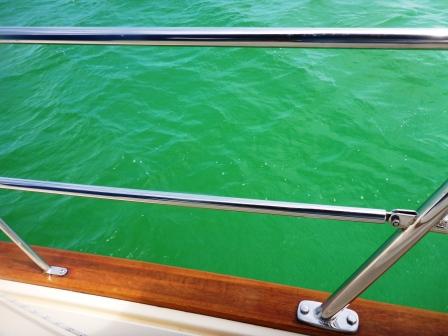 Sea turned green!