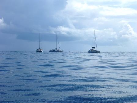 Catamarans circling