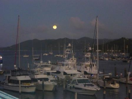 The marina lit by the moon