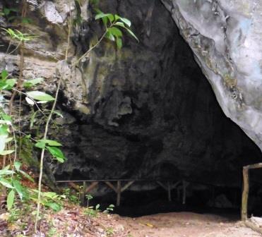 Los Haitises Caves 1.1
