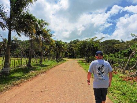 Trek to the eco lodge