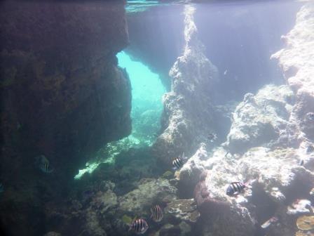 Inside Thunderball Grotto 5