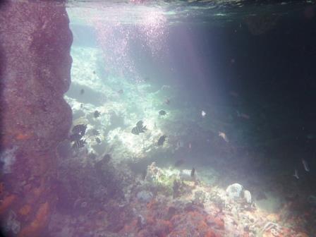 Inside Thunderball Grotto