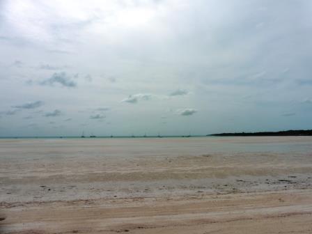 Sand flats 2