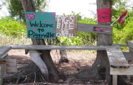 Piggyville