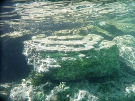 Snorkelling 6