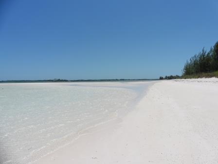 Warderick Wells beach 2