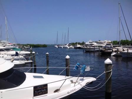 Harbortown Marina view