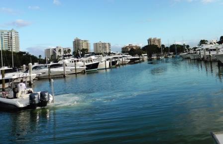 Marina Jack, Sarasota