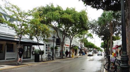 Duval Street 6