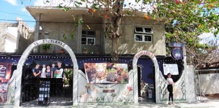 Garden Oasis bar