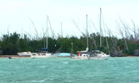 More dead boats 2