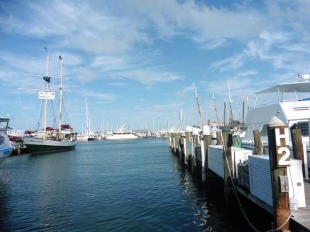 Walking the docks
