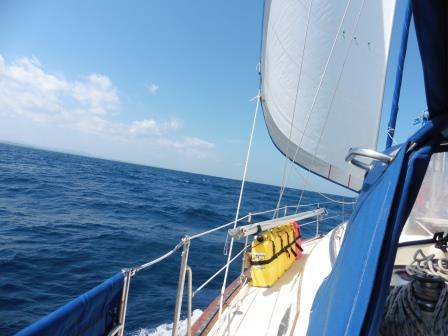 Downwind sail
