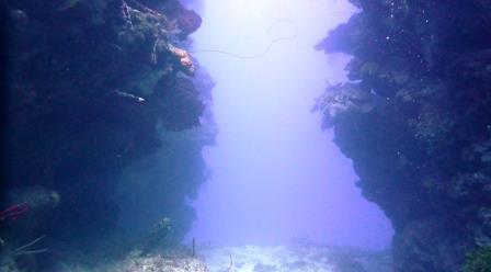 2 Dive 2