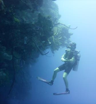 3 Dive 3