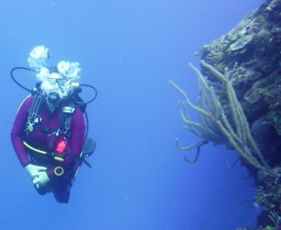 3 Dive 6