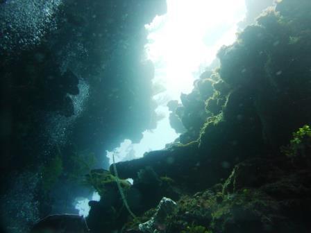 Dive 4 5