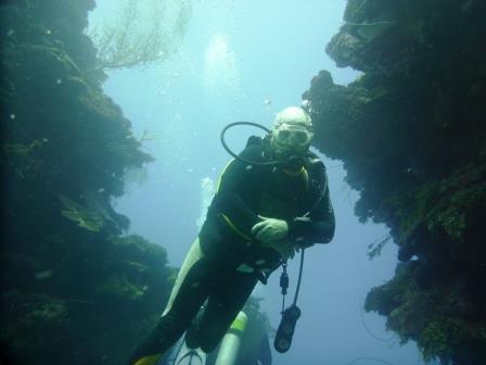 Dive 4 6