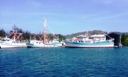 Fishing fleet 1
