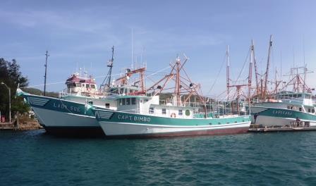 Fishing fleet 2