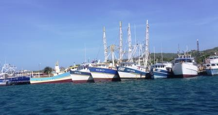 Fishing fleet 3