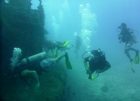 Dive 3 - 11
