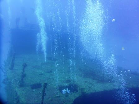Dive 3 - 4