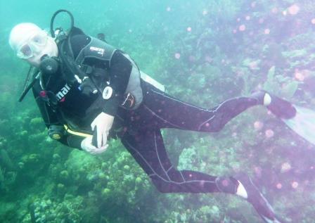 Dive 8