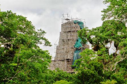 Tikal 24