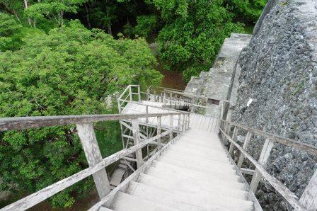 Tikal 25
