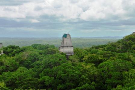 Tikal 27