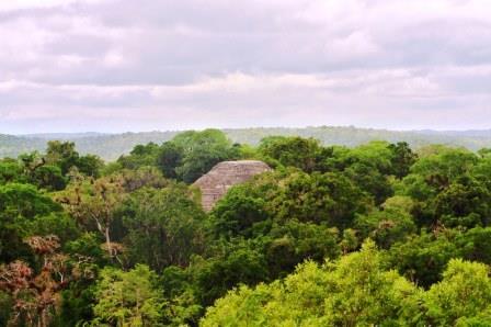 Tikal 28