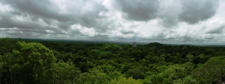 Tikal 29