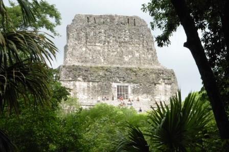 Tikal 31